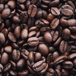 Café y bebidas instantáneas